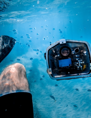 10 Common Underwater Photography Mistakes Beginners Make