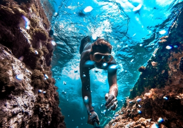 Humpback Hero Saves Snorkeler
