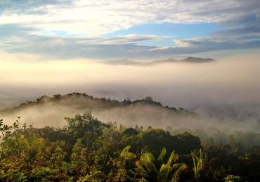 Borneo: Nature's High Five