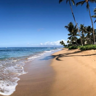 Lahaina: Gateway to Diving
