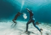 The Ascent of Freediving