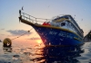 Five Great Reasons to do a Liveaboard