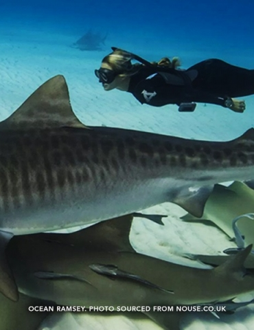 Pushing it to the Limit: 5 Extreme Dives