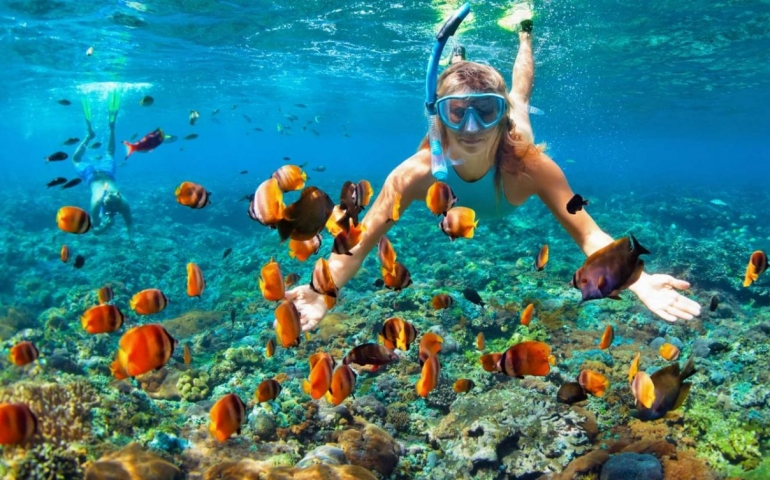 Protected: Top 3 Best Snorkel Gear You Can Buy On Amazon   Plus Bonus Tip