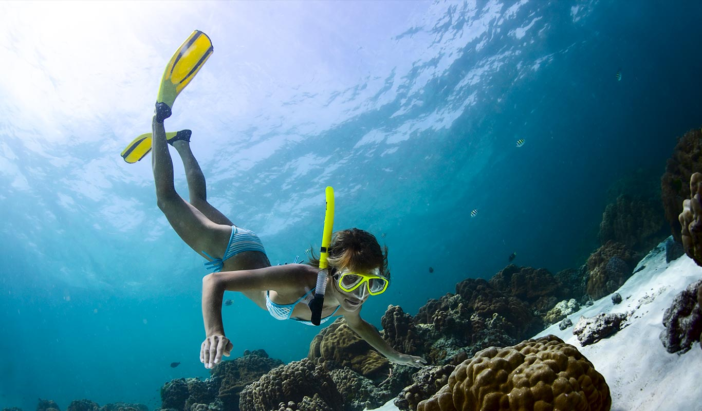 The Difference Between Scuba Fins And Snorkel Fins
