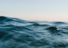 What Can We Do to Help Our Oceans? (The Obvious)