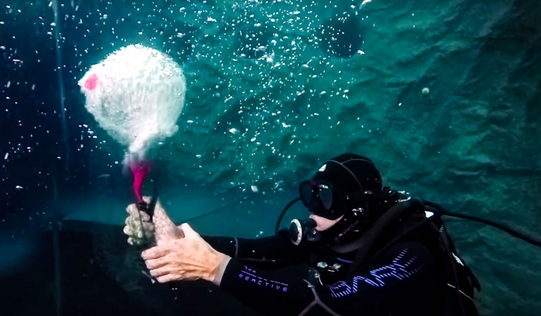 What happens when you hold your breath while you scuba dive