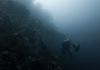 10 Wreck Dives for Beginners