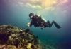 Deepblu Diver Spotlight: Aleksandr Murzagaliev