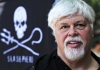 Captain Paul Watson: A Lifetime of Protecting the Sea