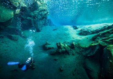 Best Cold Water Dive Spots
