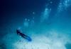 Best Scuba Diving Blogs to Follow in 2020
