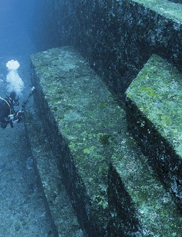 10 Places you didn't know you could dive!