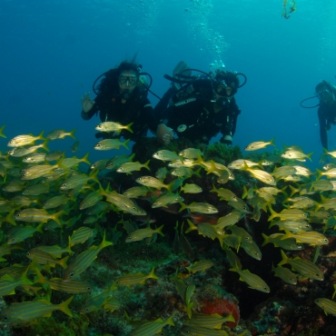 How to Learn a New Language While Dive Traveling